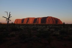 Uluru (Julien Falissard) Tags: park red panorama rouge roc view desert centre devils north australia canyon falls kings national tropic uluru kakadu kata tjuta marbles middle paysage edith territory capricorn 2016