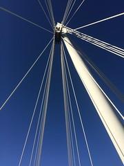Walking between cables (markshephard800) Tags: uk bridge blue light england white london architecture bluesky wires gb jubileebridge