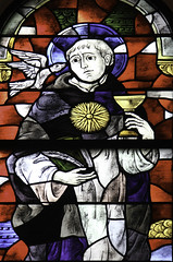 Saint Thomas Aquinas (Lawrence OP) Tags: sun college window saint dominican dove stainedglass providence friar chalice eucharist stthomasaquinas doctorofthechurch sylvianicholas