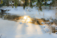 Winter River (AudioClassic) Tags: snowflake winter sunset sunlight mist snow cold ice nature fog forest reflections river outdoors photography estonia day nopeople falling fairy blizzard baretree glade firtree icecrystal tranquilscene beautyinnature nonurbanscene