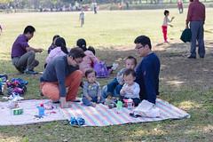 BM7Q4348.jpg (Idiot frog) Tags: park family boy sunlight cute boys field grass kids children happy daylight picnic child outdoor bade happiness sunbath daytime joyful taoyuan happyhour hangout ecosystem