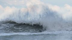 surfer 941 (cjnewlife12) Tags: storm crazy waves surfer spray bomb outerbanks epic obx