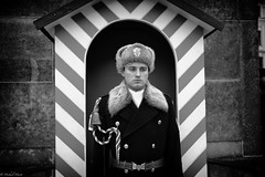 Castle Guard (michael.mu) Tags: leica blackandwhite bw castle 35mm czech prague guard praha hradany honorguard m240 leicasummicron35mmf20asph silverefexpro leicasummicronm1235mmasph