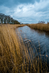 DSCF7899 (Neal_T) Tags: uk longexposure winter water clouds 35mm river reeds fuji cloudy norfolk norwich fujifilm 12mm thatchedroof boathouse norfolkbroads xe1 samyang 10stop norfolkwildlifetrust hicklingbroads samyang12mm
