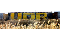 UDR (timetomakethepasta) Tags: train graffiti freight autorack wholecar udr