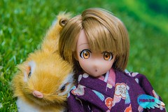 Kotori ( (Tenshi no Nichijou)) Tags: kotori azone pureneemo