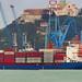 Ancona, Marche, Italy - Cargo Jork Valiant (PT) - by Gianni Del Bufalo  CC BY 4.0
