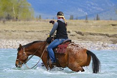 Drinkin' & Shootin'! (cowgirlrightup) Tags: appaloosa spring blond alberta prettygirl rivercrossing braid cowgirlrightup horsebackshooting travelalbertacom