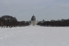 Washington Blanketed in Snow (Phil Spell) Tags: washingtondc nationalmall canon dome architecture unitedstatescapitol uscapitol building winter usgovernment trees skyline landmark unitedstates usa northamerica nationalcapitalregion capitalcity