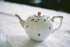 Teapot (Caroline B Kuhn) Tags: film teapot analogue teaparty