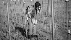 palmer sculptures 2016 - 1831 - rick clise (liam.jon_d) Tags: adlfringe palmersculptures 400parts 400partspermillion 7th 7thpalmersculpturebiennial agw mono adelaidefringe adelaidehills anthropogenicglobalwarming art artist arty australia australian bw billdoyle blackandwhite climatechange co2 fringe fringe2016 glassjar globalwarming jarrah landscape messageinabottle mildsteel monochrome mountlofty mountloftyranges mtlofty mtloftyranges note outdoor palmer palmersculpture palmersculpturebiennial palmersculpturebiennial2016 palmersculptures2016 recycled rickclise rjar sa sculpture sculptureinlandscape seventh southaustralia southaustralian warning lofties loftys loftyrangesimset portraitimset popularimset pickmeset