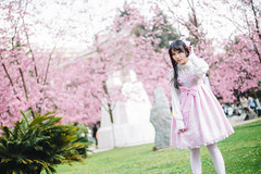 FOX21469-Edit (FoxSchumacher) Tags: china portrait people girl canon lolita sakura kunming  ef50mmf14usm 1dmarkiv