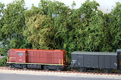 2016_03_28_Valkenveld Trees_34 (dmq images) Tags: railroad scale layout model railway 187 modelleisenbahn schaal modelspoor h0 valkenveld
