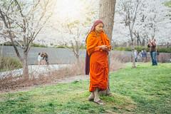 Monk at the Cherry Blossom Festival 2016 (Seized Photo) Tags: people festival portraits cherry golden washingtondc tour blossom monk basin tidal