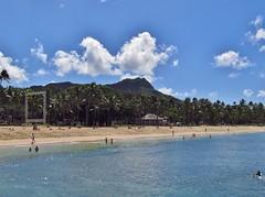 Honolulu, Hawaii (Jasperdo) Tags: beach landscape hawaii sand scenery palmtrees diamondhead honolulu waikikibeach