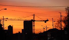 Sunrise on the Eglinton East LRT (Quistian) Tags: toronto sunrise canon rps leaside 2016 t5i 201604 20160428