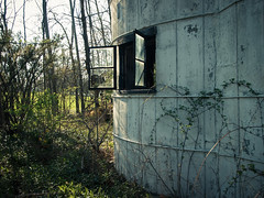 Dog Bone House (ArchitecturalAfterlife) Tags: ohio dog house green history abandoned countryside decay destruction empty adventure explore forgotten done spaces wishbone urbex johnnyjoophotography