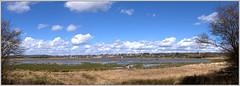 Pulborough Brooks Panorama From The Lookout (bokosphotos) Tags: panorama view panasonic scc stitchedpanorama pulborough pulboroughbrooks rspbpulboroughbrooks panasonicgh3 1235f28 dmcgh3 viewacrosspulboroughbrooks floodedbrooks southwickcccoffeemorning