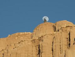 Pigeon in the Moon (snowpeak) Tags: pigeon moonrise cathedralgorge nevadastatepark nikon24120f4 nikond800e pigeoninthemoon