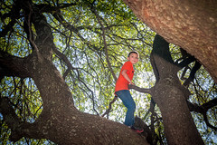 Springtime in Texas (boboatman1) Tags: tree treeclimbing