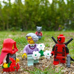 Grandma likes red. (http://MiniPlayHouse.com)#lego #minifigures #deadpool #grandma #grandmavistor #littleredridinghood #wolf #marvel #superhero #cosplay #toy #photography (dadawudawu) Tags: grandma toy photography wolf lego cosplay littleredridinghood superhero marvel minifigures deadpool grandmavistor