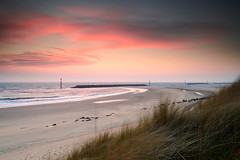 Vibrant Dawn at Sea Palling (Steven Docwra) Tags: uk sea england seascape colour tourism beach sunrise photography bay coast photo spring nikon paradise britishisles bright unitedkingdom vibrant dunes norfolk picture eu peaceful sunny nopeople coastal northsea redsky lowtide reef tranquil sanddunes eastanglia pinkclouds sandybeach d800 beachresort coastaltown seapalling marramgrass tiltshiftlens seadefense touristdestination framedimage beautifuldawn nikon24mmf35dedpcelens offshorereefs