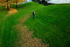 . (www.piotrowskipawel.pl) Tags: street city autumn abstract man tree green grass leaves work germany mnchen bayern leaf funny cityscape path candid lawn streetphotography photojournalism documentary surreal worker reportage decisivemoment blower funnypicture candidphotography documentaryphotography colorstreetphotography pawepiotrowski piotrowskipawelpl