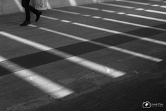IMG_1635 (Cromik Photo) Tags: bw ombre step luci biancoenero camminare