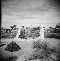 Ryan Ranch, No.2 (a.k.a. Flash) Tags: 120 film landscape holga ruins december scan joshuatreenationalpark 2015 ryanranch
