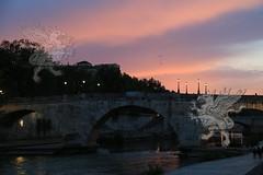 Roma_isolaTiberina_005