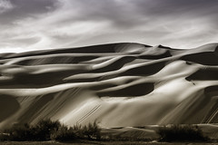 Traction (CEBImagery.com) Tags: sea sand dunes monochromatic imperial alifornia salton