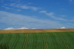 Campagne Toulousaine (31) (FloLfp) Tags: pentax champs vert bleu ciel liberté terre nuage paysage campagne herbe