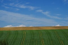 Campagne Toulousaine (31) (FGuillou) Tags: pentax champs vert bleu ciel libert terre nuage paysage campagne herbe