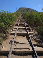 Koko Head Crater Trail (JonathanWolfson) Tags: hiking trail koko kokohead