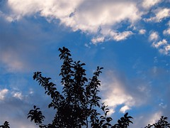 Sky 20140715 (caligula1995) Tags: clouds plumtree 2014