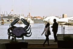 Fells Point (Larry1732) Tags: fellspoint maryland lamsa innathendersonswharf crab hendersonswharf baltimore