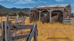 The old and unstable, stable (Rob Reaburn Photography) Tags: summer building abandoned grass barn yard pen gate timber farm rustic shed ruin australia victoria disused aged stable ramshackle dilapidated weatherboard relic yesteryear disrepair rickety yellowgrass timbergate