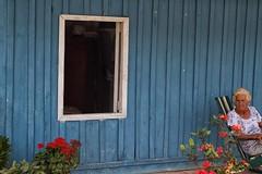 la signora della casa azzurra (mat56.) Tags: old flowers blue woman house window lady composition casa donna blu candid cuba finestra fiori antonio vinales azzurro composizione caraibi azzurra signora anziana mat56 romei