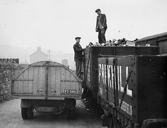 Collecting scrap at Hetton Station Goods Yard (Tyne & Wear Archives & Museums) Tags: road roof sky abstract blur industry wheel metal stone wall shirt yard standing fence buildings 1974 interesting workers industrial carriage unitedkingdom path timber mark coat debris caps grain plate ground social number soil cap transportation signage bolt archives land letter vehicle trousers unusual telegraphpole scrap railways crease flap attentive slope collecting numberplate fascinating digitalimage sunderland scrapmetal citycouncil 1895 blackandwhitephotograph northeastofengland goodsyard moorsley mid20thcentury eastrainton hettonlehole easingtonlane hettondowns hettonurbandistrictcouncil hettonstationgoodsyard hettonleholeurbandistrict sunderlandmetropolitanborough localgovernmentact1894