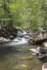 Oak Creek (IvanTortuga) Tags: arizona usa water unitedstates sedona az oakcreek grasshopperpoint