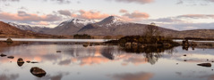 Pale Pastel Dawn (Damon Finlay) Tags: panorama black mountains landscape islands scotland highlands nikon scottish glen na mount d750 glencoe wilderness nikkor moor f28 coe 80200mm rannochmoor lochan rannoch scottishhighlands highlandsandislands blackmount nikkor80200mmf28 lochannahachlaise hachlaise nikond750