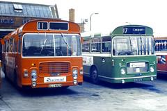 Slide 056-57 (Steve Guess) Tags: uk red england bus green bristol hampshire gb re lh provincial ecw rell hants hantsdorset