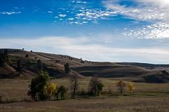 IMG_7989-Edit (Aspire Higher) Tags: southdakota blackhills landscape bluesky hills prairie tress aspire