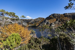 Crater Lake, Tasmania (Steven Penton) Tags: mountain australia tasmania cradle fagus