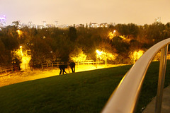 IMG_0061 (Jackie Germana) Tags: uk london guyfawkes bonfirenight