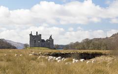 Kilchurn Castle, Loch Awe (Graham Cameron Himself) Tags: castle landscape scotland unitedkingdom ruin bluesky oban derelict lochawe fluffyclouds inlandlake kilchurncastle scottishloch