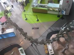 IMG_4224 (FigmentJedi) Tags: minnesota dinosaurs sciencemuseumofminnesota