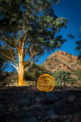 Ball of Light - Art Therapy (biskitboy) Tags: lightpainting art australia outback southaustralia flinders flindersranges lightart balloflight lightball arttherapy denissmith denissmithphotography