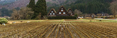 Shirakawa-go three houses - wide (NettyA) Tags: travel houses roof winter house reflection water field japan asia village thatch unescoworldheritage shirakawago shirakawa gassho 2015 gasshostyle ogimachi gifuprefecture onodistrict