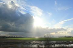 IMG_9332 (Mr. Blue-Sky25) Tags: road sunset sun holland nature water netherlands grass clouds zonsondergang utrecht toren nederland natuur wolken motorbike motorcycle gras motor dijk zon dike weg lek ijsselstein gerbrandy motorfiets